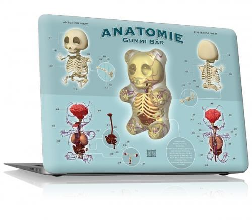 gelaskins anatomy design laptop skin