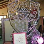 zelda ice sculpture link shield