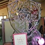 zelda ice sculpture link shield