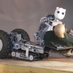 Amazing_Rescue_Robots_5