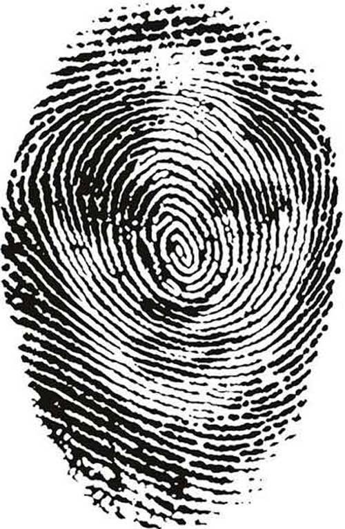 Fingerprint_Art_2