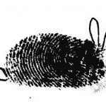 Fingerprint_Art_13