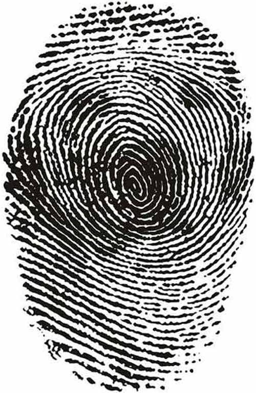 Fingerprint_Art_9