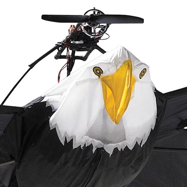 Flying RC Bald Eagle