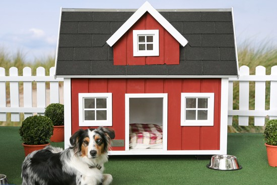 Luxurious_Doghouses_19