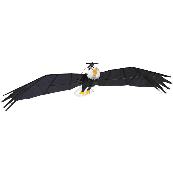 Radio Controlled Bald Eagle