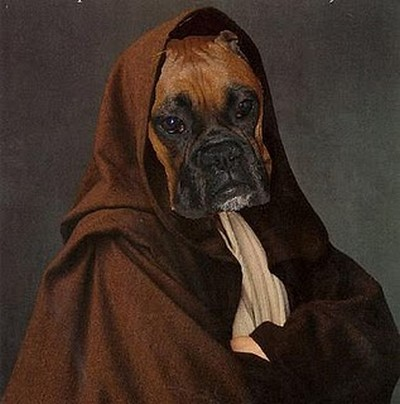 Star_Wars_Animals_in_Costumes_19