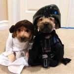 Star_Wars_Animals_in_Costumes_25