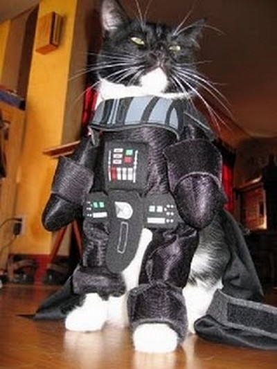 Star_Wars_Animals_in_Costumes_7