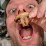 pi mushroom pi day