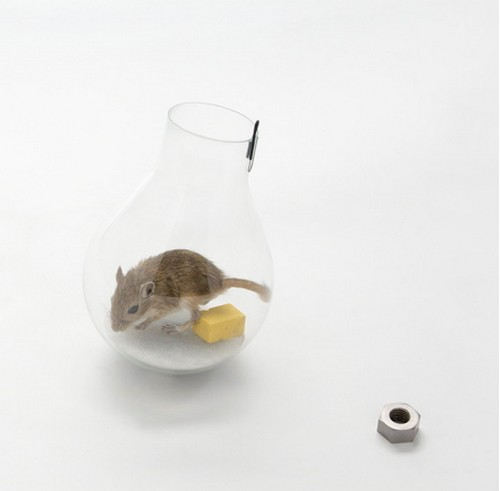 Crazy_Mousetraps_1