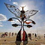 Extraordinary_Kinetic_Sculptures_2