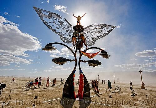 Extraordinary_Kinetic_Sculptures_3