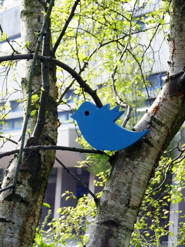 TweetingSeat 5
