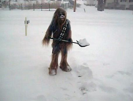 funny chewbacca snow