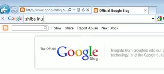 google toolbar 7 image