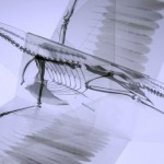 origami animal skeleton 3