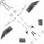 origami animal skeleton 8