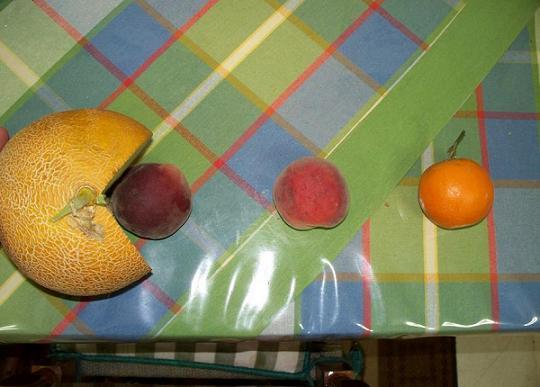 Melon-Man
