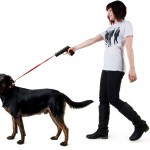Retractable Dog Snap Leash 2