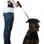 Retractable Dog Snap Leash 3