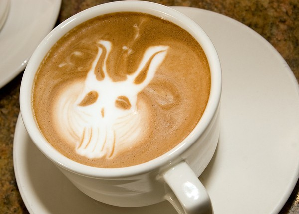 latte art frank from donnie darko