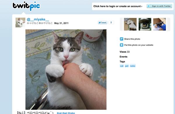 Twitpic Screenshot