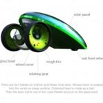 Lawn Beetle 3
