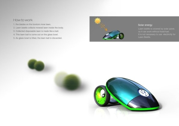 Lawn Beetle 4