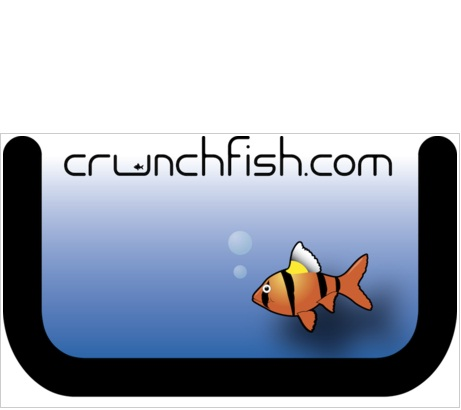 active 3d tech crunchfish nexus s