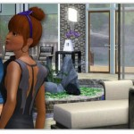 sims 3 store