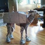 Dog AT-AT Costume 2