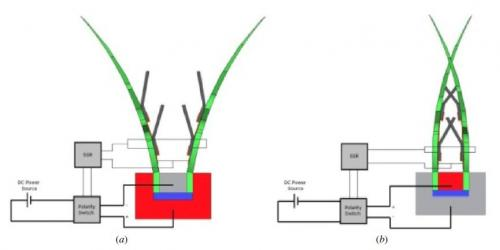 robot venus fly trap schematic