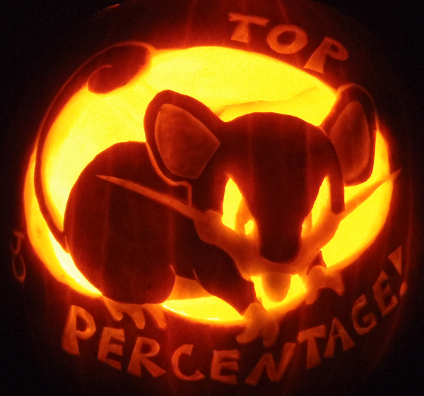 top_percentage_rattata_pumpkin
