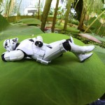 Sandtrooper6