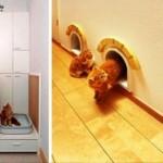 2011-Unique-Cat-House