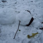 Drunk snowman 10