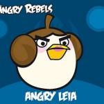 angry birds art