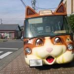 school kitty cat bus