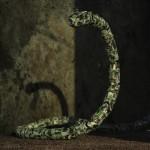 The Slithering Snakebot