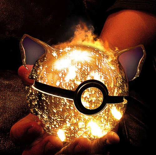 Charizard Pokeball