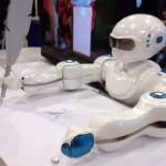 The Sket Robo