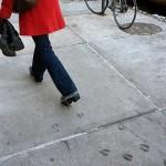 Animal-Footprint-Shoes-3