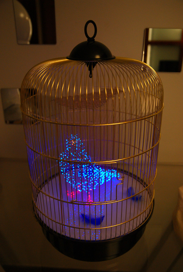 Hologram Bird