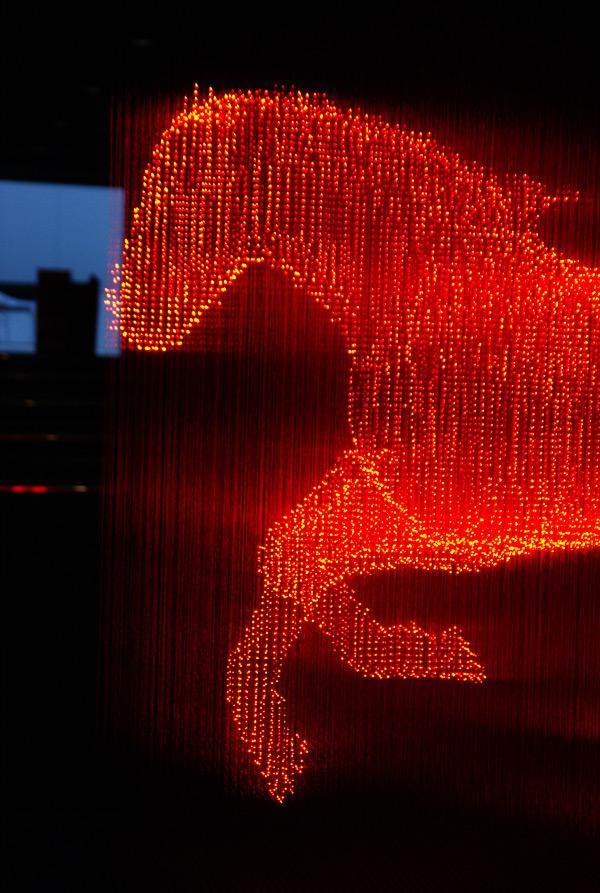 Hologram horse close-up