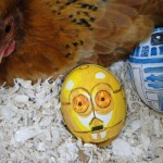 Easter Droids