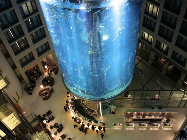 Hotel-aquarium-3