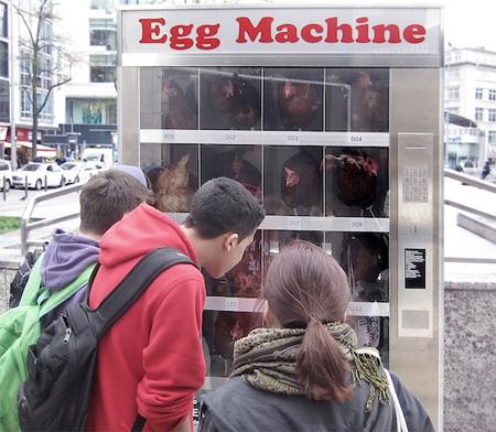 eggmachine02