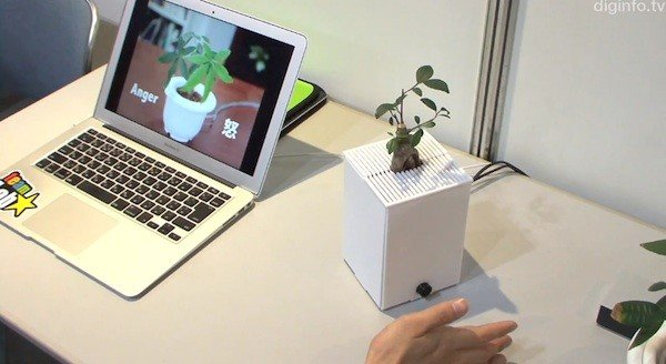 Interactive Plant showing emotions