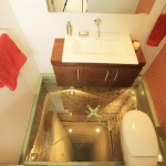scary toilet glass floor 2